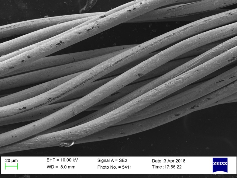 SEM: Scanning Electron Micrograph of conductive yarn with scale bars of 20um.
